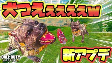 【CODモバイル バトロワ】🐶新アプデ来たぁぁぁw🐶 クラス ピエロの犬がクソ強すぎワロタw 高ティア(゚∀゚)キタコレ!! SOLO VS SQUADS【codm br】
